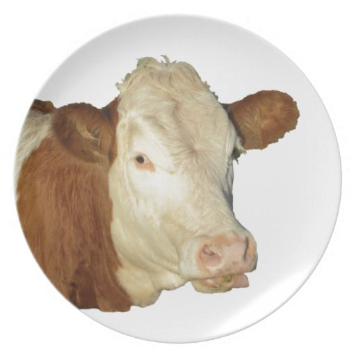 The Cow Dinner Plates