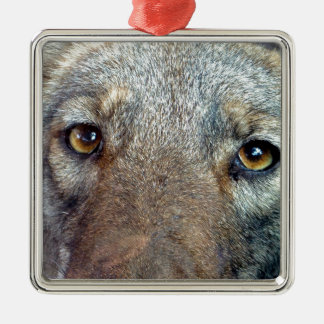 The Coyote 2 Christmas Ornament