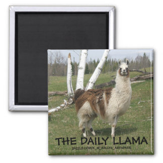 THE DAILY LLAMA REFRIGERATOR MAGNET