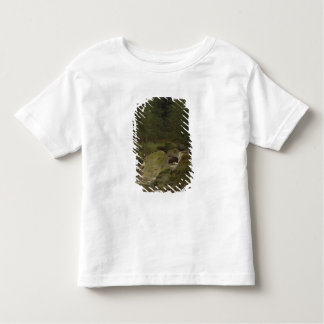 The Evergreens by the Waterfall Tee Shirts