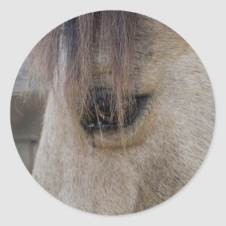 The Eye of the Horse Classic Round Sticker