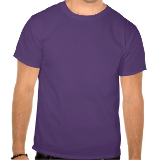The Final Frontier shirt