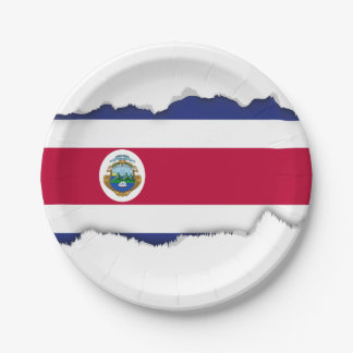 The Flag of Costa Rican Paper Plate