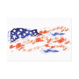 The Flag of Usa Canvas Print