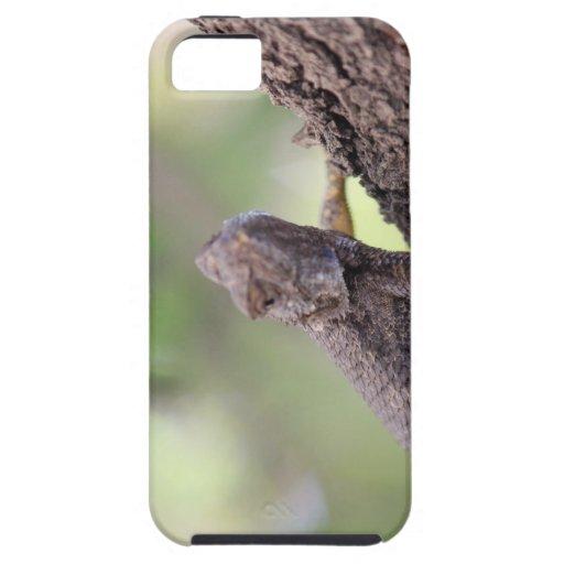 The Friendly Lizard iPhone 5 Case