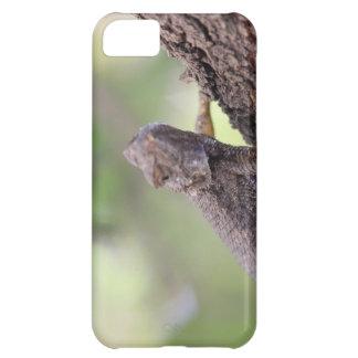 The Friendly Lizard iPhone 5C Case