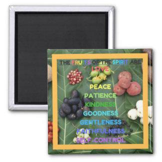The Fruits of the Spirit (Design 4 - Orange) Square Magnet