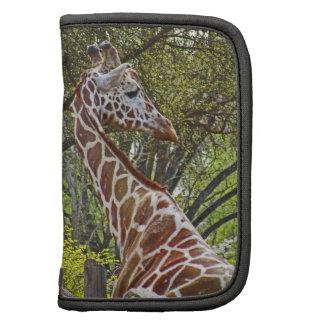 The Giraffe ~ Rickshaw Folio Mini Planners
