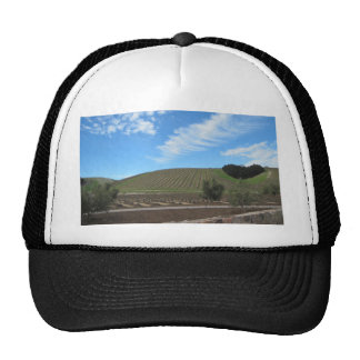 The Heart of Paso Robles Wine Country Hats