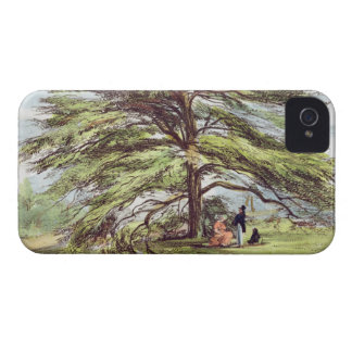 The Lebanon Cedar Tree in the Arboretum, Kew Garde iPhone 4 Case