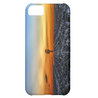 The Lonely Tree for iPhone 5 iPhone 5C Case