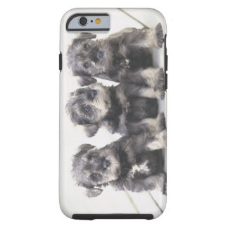 The Miniature Schnauzer is a breed of small dog Tough iPhone 6 Case