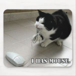 The Mouse Mouse Mats