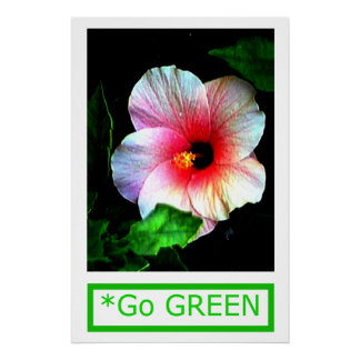 The MUSEUM Artist Series by jGibney  Go Hibiscus Print