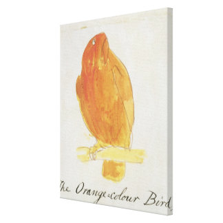 The Orange Colour Bird, from 'Sixteen Drawings of Canvas Print