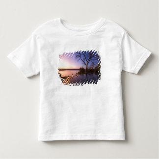 The River Club lodge, sunset on Zambesi River, T Shirts