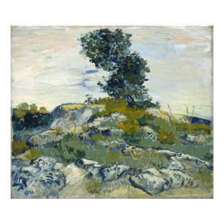 The Rocks by Vincent Van Gogh Photographic Print