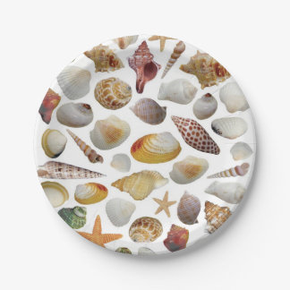 The Shell Collector Paper Plates