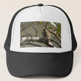 The Sparrow Trucker Hat