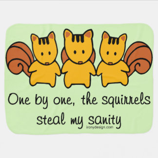 The squirrels steal my sanity baby blanket
