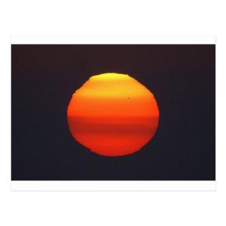 The Sun Post Card