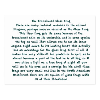 The Translucent Glass Frog Postcard