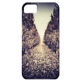 The tunnel iPhone 5 case