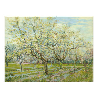 The white orchard by Vincent Van Gogh Photo Art
