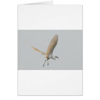 The White Stork Tom Wurl.jpg Card