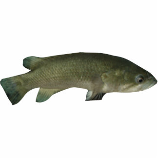 The Wish Fish Family - Harold Photo Sculpture Keyc