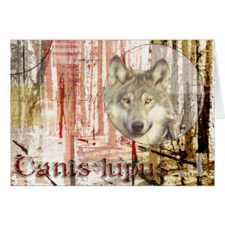 The Wolf (canis lupus) Card