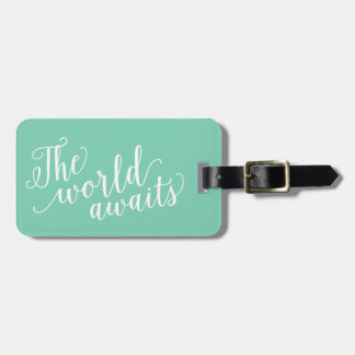The World Awaits in Seafoam | Luggage Tag
