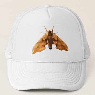 There's A Moth On Your Hat! Trucker Hat