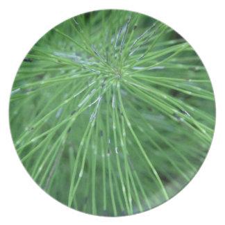 Think Green! by GRASSROOTSDESIGNS4U Plate