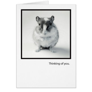Thinking of You, Cute Mouse Photo Greeting Greeting Card