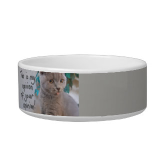 This is My Opinion of Your Opinion Cat Bowl- Gray Bowl