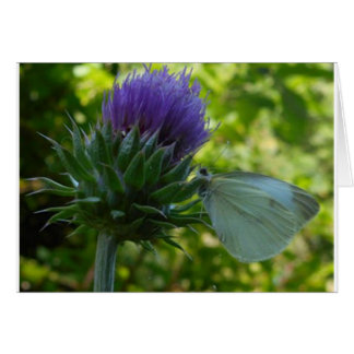 Thistle and Moth Note Card