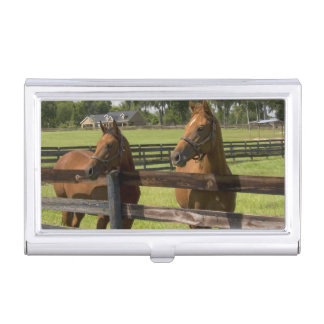 Thoroughbred horse farm in Marion County, Business Card Holder