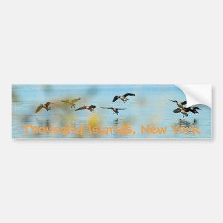 Thousand Islands Geese Bumper Sticker