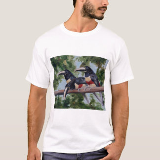 Three Amigo's Toucan Ladies Tshirt