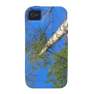 Three birch trees on the background of the sky vibe iPhone 4 cases