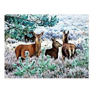 Three Deer on a Winter Day Christmas Postcard
