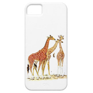 Three Giraffes Illustration Barely There iPhone 5 Case