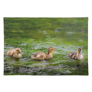 Three Little Ducklings Ducks Placemat