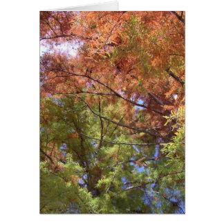 Three Seasons Card