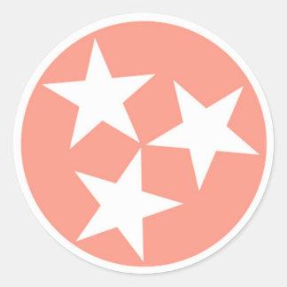Three Star Tennessee State Flag Sticker