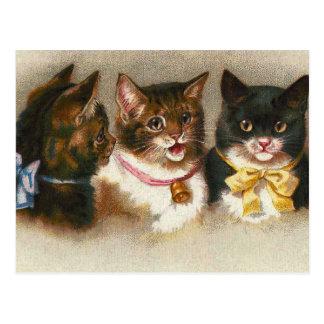 """Three Vintage Cats"" Postcard"