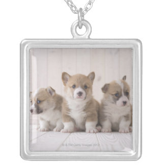 Three Welsh Corgi Silver Plated Necklace