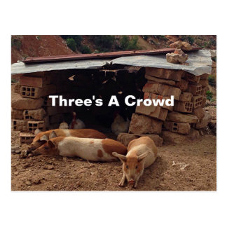 Three's A Crowd. Moving Out Postcard