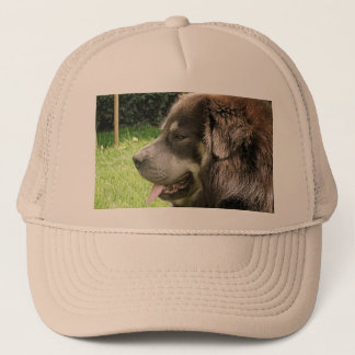 tibetan mastiff.png trucker hat